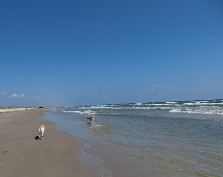 Mustang Island State Park Weather  Day